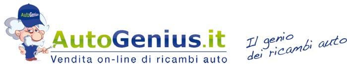 Logo Autogenius Store